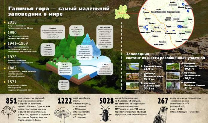 Заповедник Галичья гора - ИНФОГРАФИКА